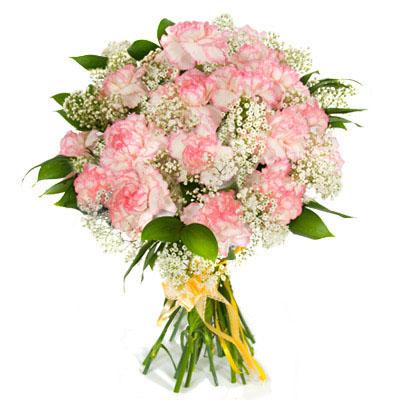 Вечноюная, свободолюбивая охотница Диана, но ее сердце истосковалось по любви.  Состав: 15 розовых гвоздик, гипсофила...
