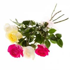 Доставка цветов в почепе, высокие букет из розы картинки