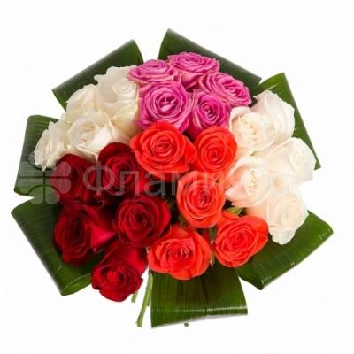Доставка цветов по всему миру фламинго купить мужчине подарок на 23 февраля