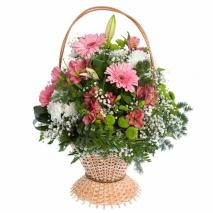 Цветы доставка цветов в городе коряжма склада